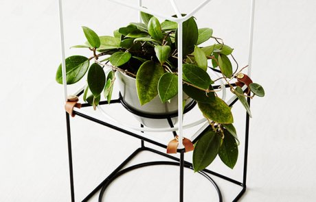 JFR-013 Rack Spring Flowers Stand /Steel Plant Stand05