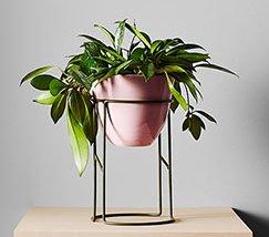 JFR-011 Pedestal Outdoor Plant Flower Stand /Rack Plant Cheap1