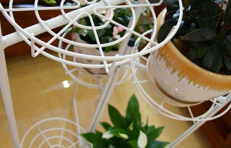pangaea folding flower rack02