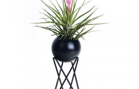 JFR-020 Stands Flower Arrangement /Small Plant02