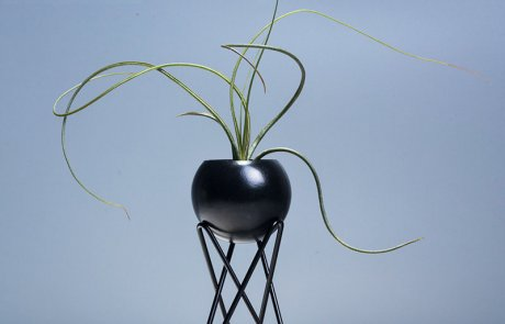 JFR-020 Stands Flower Arrangement /Small Plant04