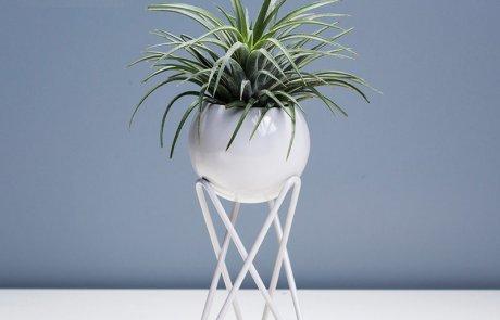 JFR-020 Stands Flower Arrangement /Small Plant01